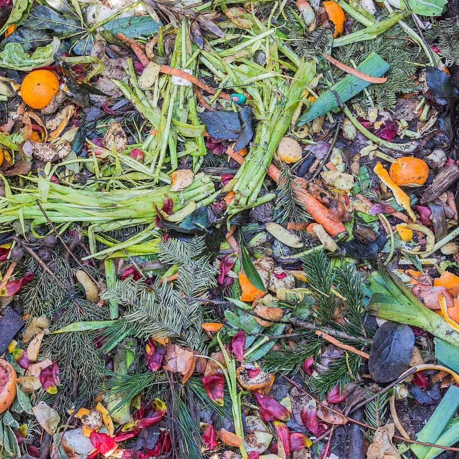 What is compost and how to compost at home